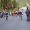 2005-05-16 Pince loebe Hammel