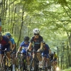 2020-08-09 Randers Bike Week #4 Bjergløb